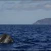 Illes Açores