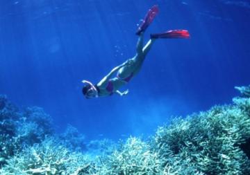 Història del Submarinisme: els orígens, el busseig a pulmó